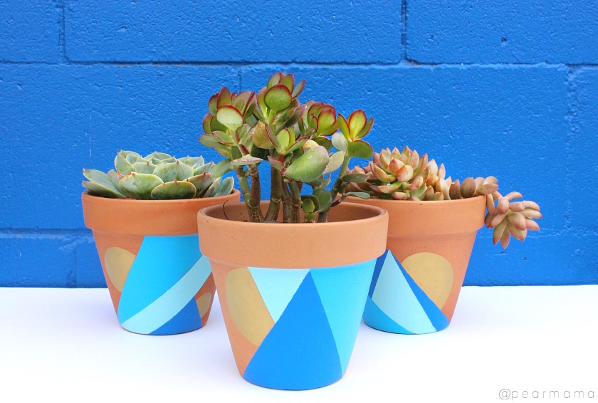 Paint your own terracotta pots using craft paint.