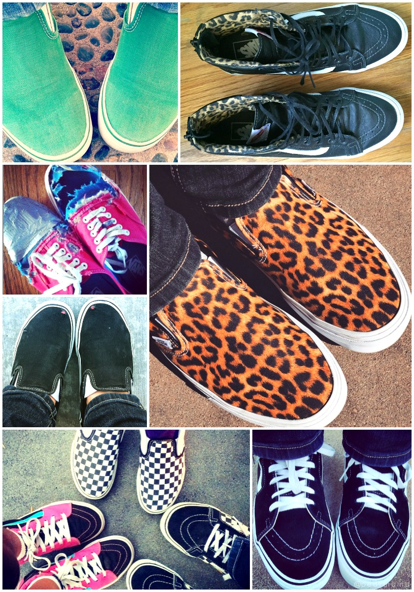 My family is obsessed with VANS shoes.
