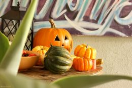 Low-key Halloween: Gourds, squash + pumpkins