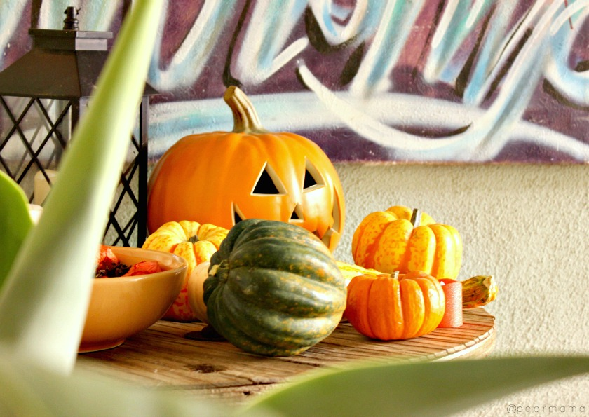 Fall decor made simple: Gourds, squash + pumpkins