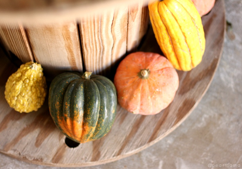 Simple holiday decor: Gourds, squash + pumpkins