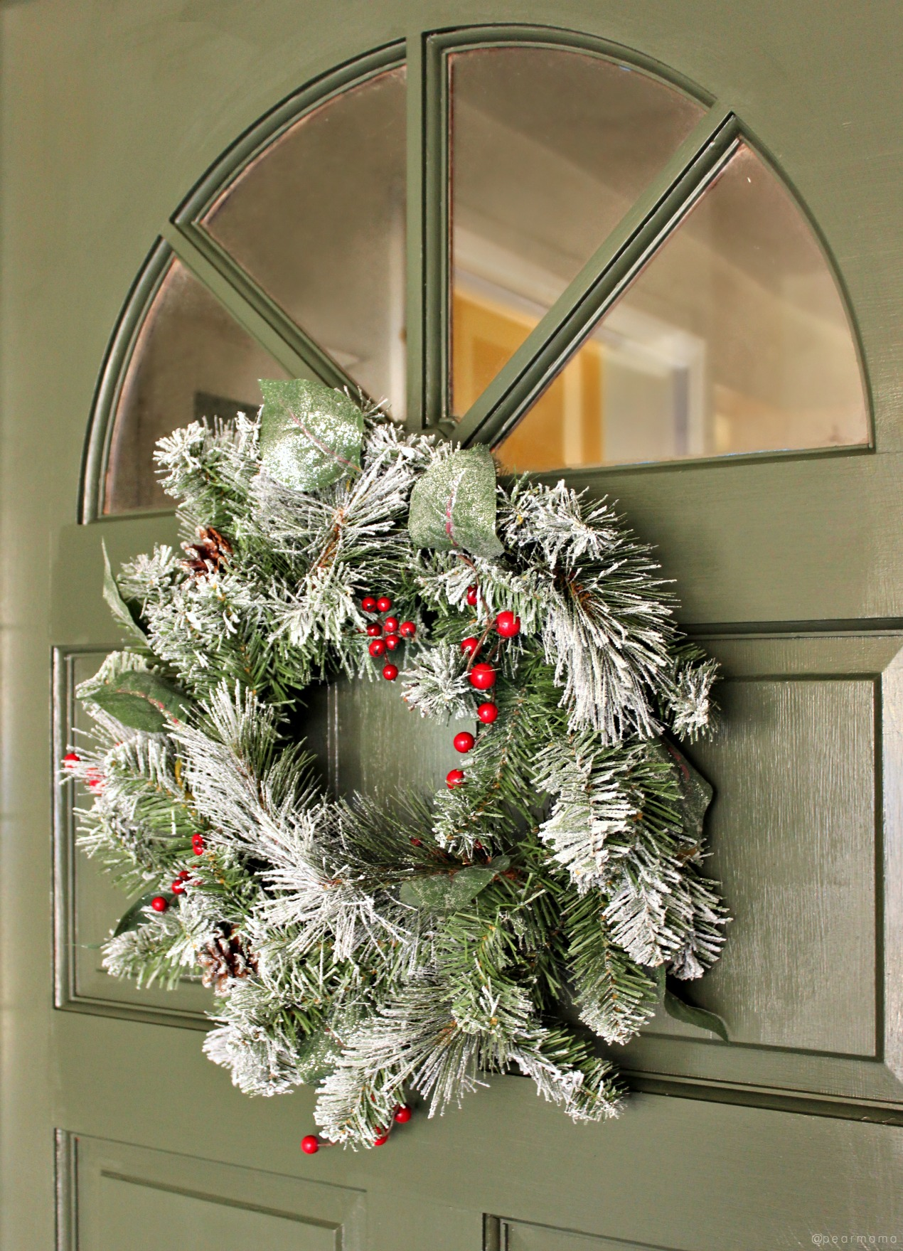 painted-front-door-christmas-wreath