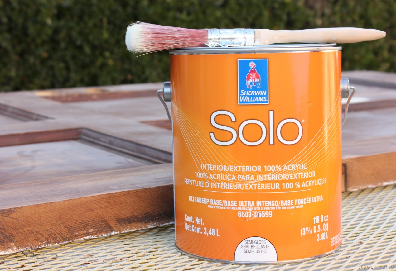 sherwin-williams-solo-paint